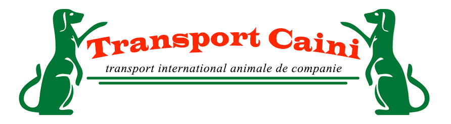 Transport caini logo